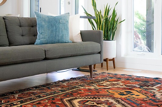 modern couch and carpet